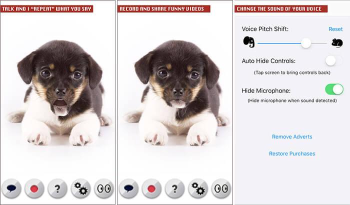 Capture d'écran de l'application Talking Dog pour iPhone et iPad