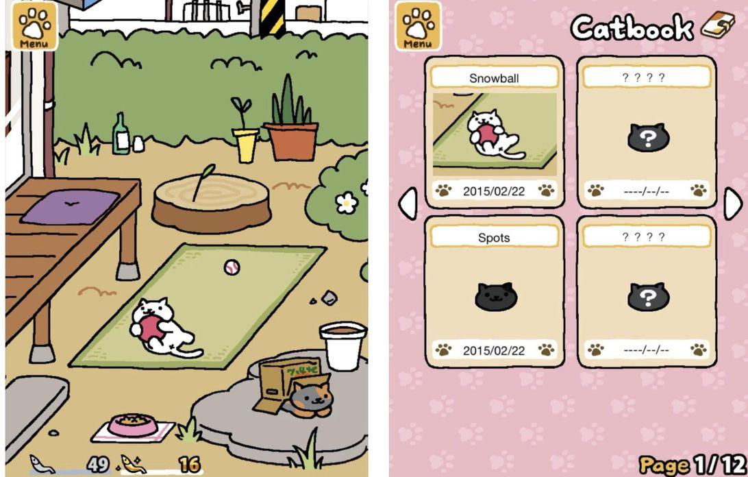 collectionneur de chats