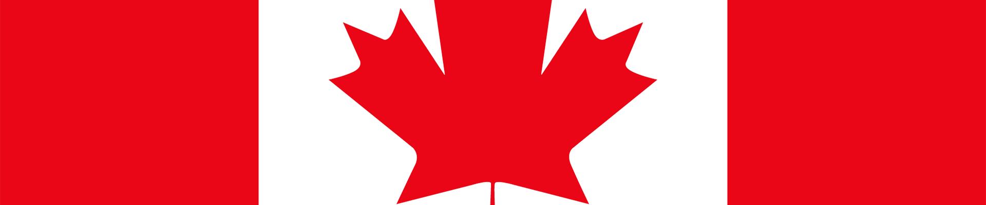 Comment regarder les finales olympiques de gymnastique féminine au saut de cheval et aux barres asymétriques en direct au Canada