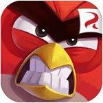 Oiseaux en colère 2